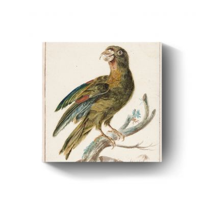 Parkiet door Jan Weenix